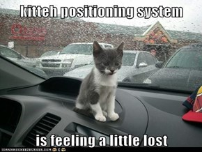 kitteh positioning system  is feeling a little lost