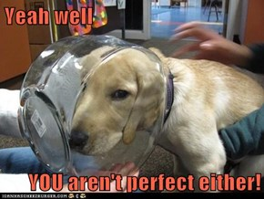 Yeah well  YOU aren't perfect either!