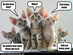 All together now: we're all ears!