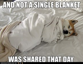 Blanket Hogging Dog