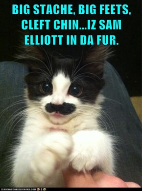 BIG STACHE, BIG FEETS, CLEFT CHIN...IZ SAM ELLIOTT IN DA FUR.