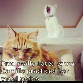 Fred really hated when Camille practiced her vocal scales