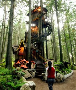 Magical Tree House Fun-Times!