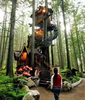 Magical Tree House Fun-Times!