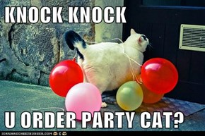 KNOCK KNOCK  U ORDER PARTY CAT?