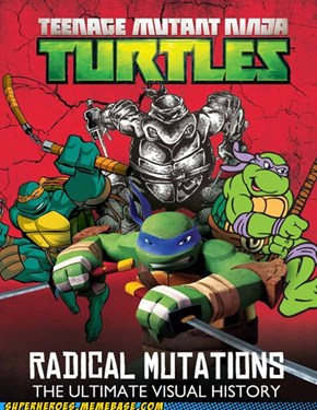 History of Turtles
