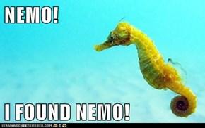NEMO!  I FOUND NEMO!