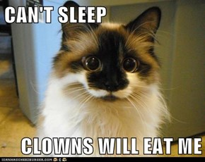 CAN'T SLEEP  CLOWNS WILL EAT ME