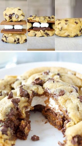 Chocolate Chip S'mores Cookies of the Day