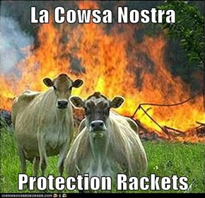 La Cowsa Nostra  Protection Rackets