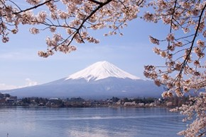 There's Never a Bad View of Mt. Fuji
