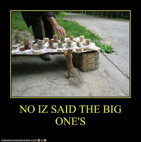 NO IZ SAID THE BIG ONE'S