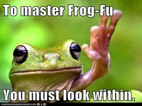 To master Frog-Fu  You must look within.