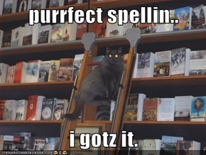 purrfect spellin..  i gotz it.