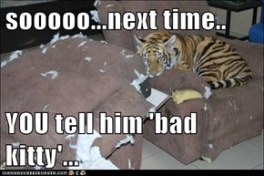 sooooo...next time..  YOU tell him 'bad kitty'...