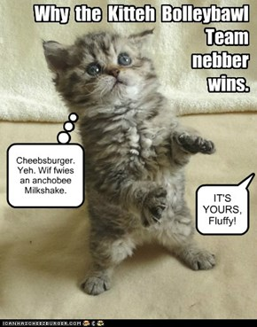 Why  the  Kitteh  Bolleybawl   Team   nebber   wins.
