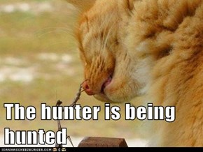 The hunter is being hunted