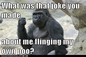 What was that joke you made  about me flinging my own poo?