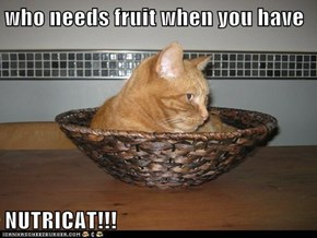 who needs fruit when you have  NUTRICAT!!!