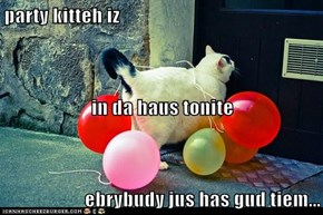 party kitteh iz in da haus tonite ebrybudy jus has gud tiem...
