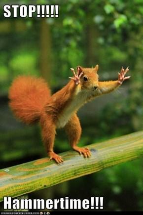STOP!!!!!   Hammertime!!!