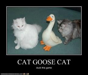 CAT GOOSE CAT