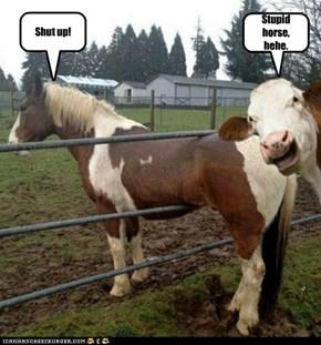 Stupid horse, hehe.