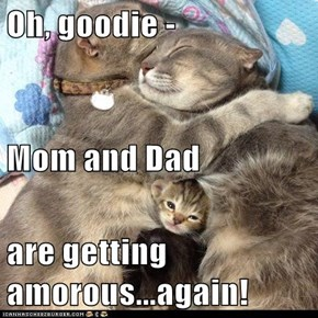 Oh, goodie -  Mom and Dad  are getting amorous...again!