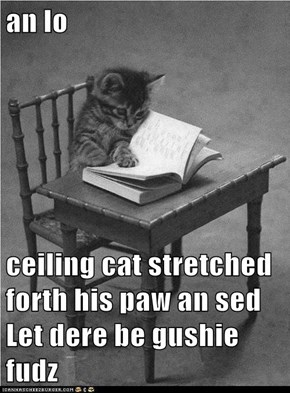 an lo  ceiling cat stretched forth his paw an sed Let dere be gushie fudz