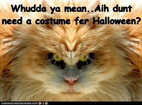 Whudda ya mean..Aih dunt need a costume fer Halloween?