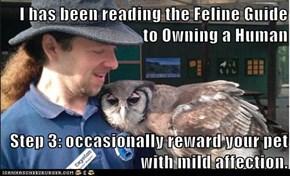I has been reading