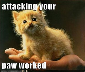 attacking your   paw worked