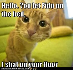 Hello. You let Fido on the bed.