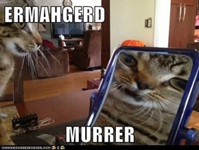 ERMAHGERD  MURRER