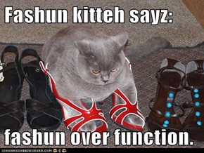Fashun kitteh sayz:  fashun over function.