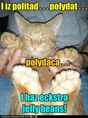 Polydactyl! ITZ POLYDACTYL!