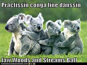 Practissin conga line danssin  faw Woods and Streams Ball