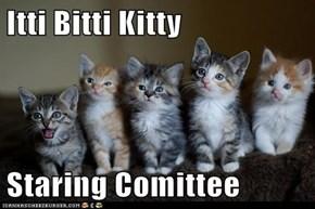 Itti Bitti Kitty  Staring Comittee