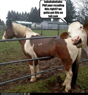 Horse Fail