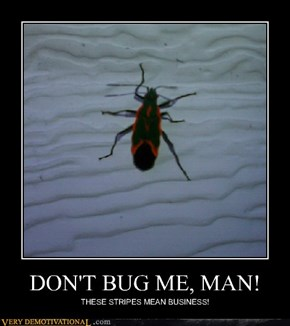 DON'T BUG ME, MAN!