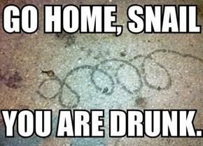 Yr Oozing Alcohol
