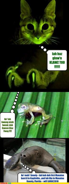 Be Not Afear'd ~ 'Tis Iah..Glow'n Kitteh !!!