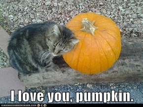 I love you, pumpkin.