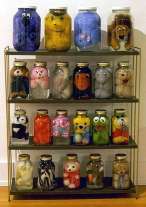 Pickled Stuffed Animals