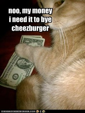noo, my money i need it to bye cheezburger