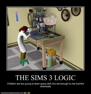 THE SIMS 3 LOGIC