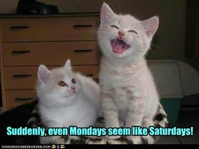 Suddenly, even Mondays seem like Saturdays!