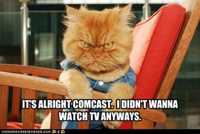 IT'S ALRIGHT COMCAST.  I DIDN'T WANNA  WATCH TV ANYWAYS.