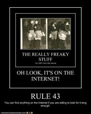 RULE 43