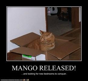MANGO RELEASED!